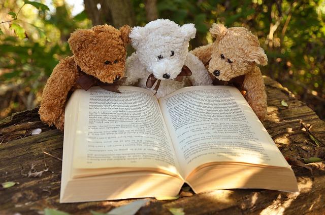 本を読むくま